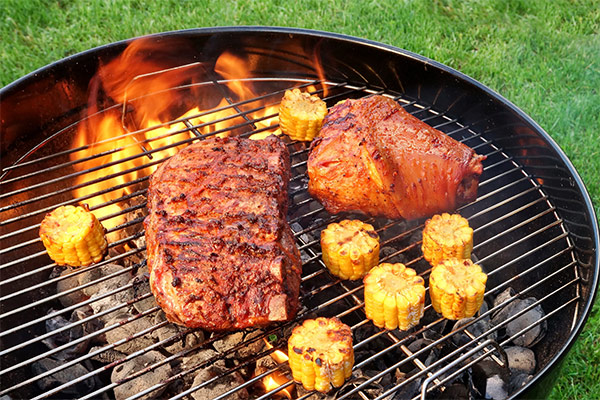 6 Best Weber BBQ Grills For Summer 2017